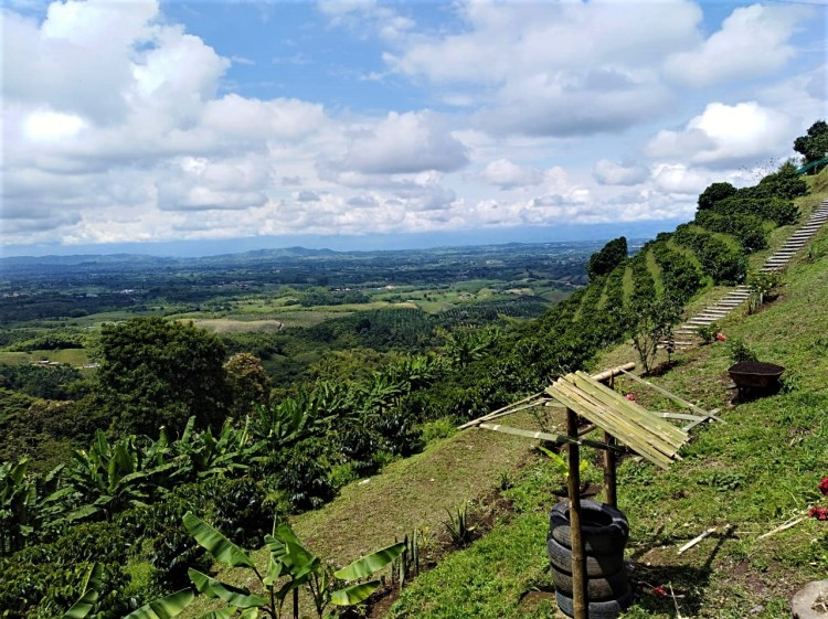High Mountain Plan in the Coffee Region - Colombia - Tourist Plan - Coffee Cultural Landscape - Coffee Tour - Coffee Hub Altagracia Coffee Tour