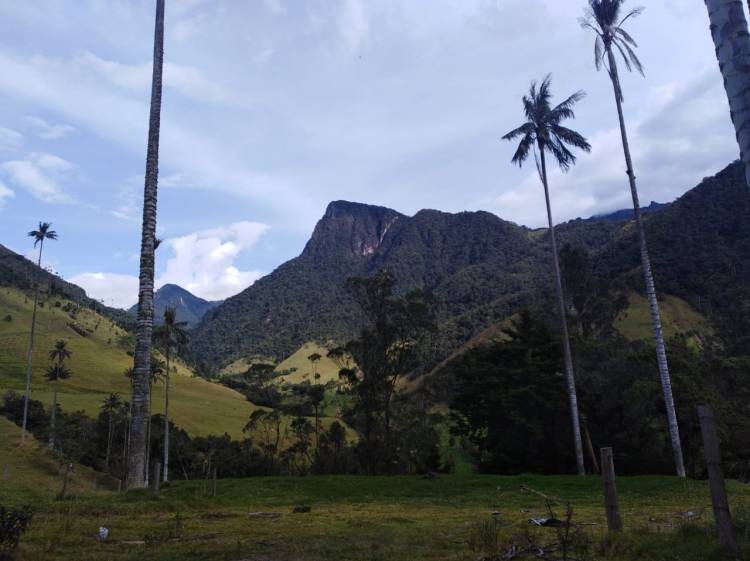Cabaña Romántica Valle del Cocora Eje Cafetero Colombia