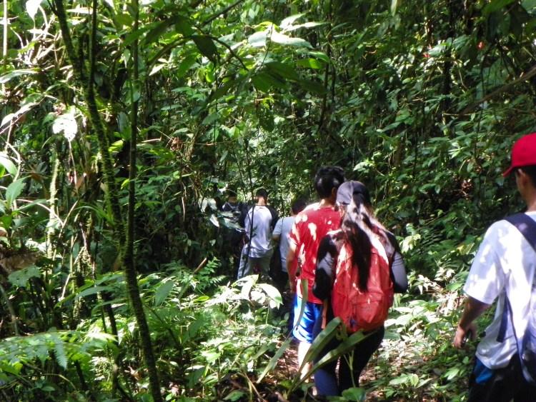 Yarumal Trail
