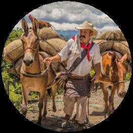 PANACA - Plan Eje Cafetero - Planea tu viaje a Colombia
