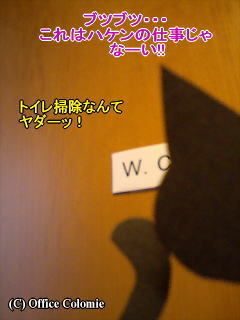 Order10-01.jpg