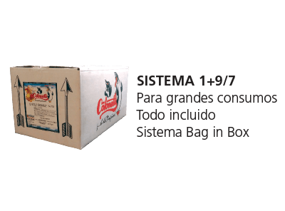 sistema-197