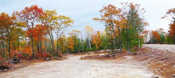colonial's quarry fall
