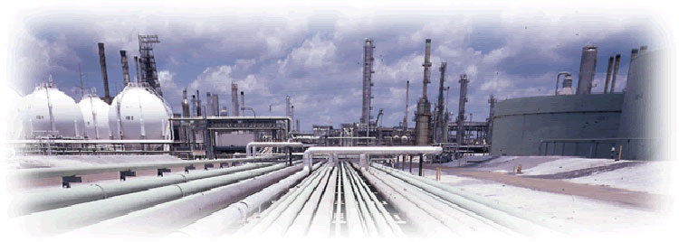 Institutional and Governmental Industrial Natural Gas Supplier