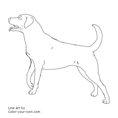 tweet coloring pages blog newest additions main coloring page index