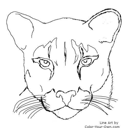 mountain lion coloring pages printable cooloring com