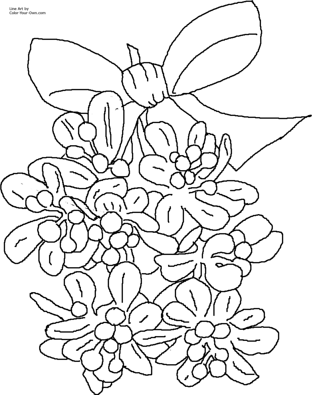 alfa img showing gt christmas mistletoe coloring sheets