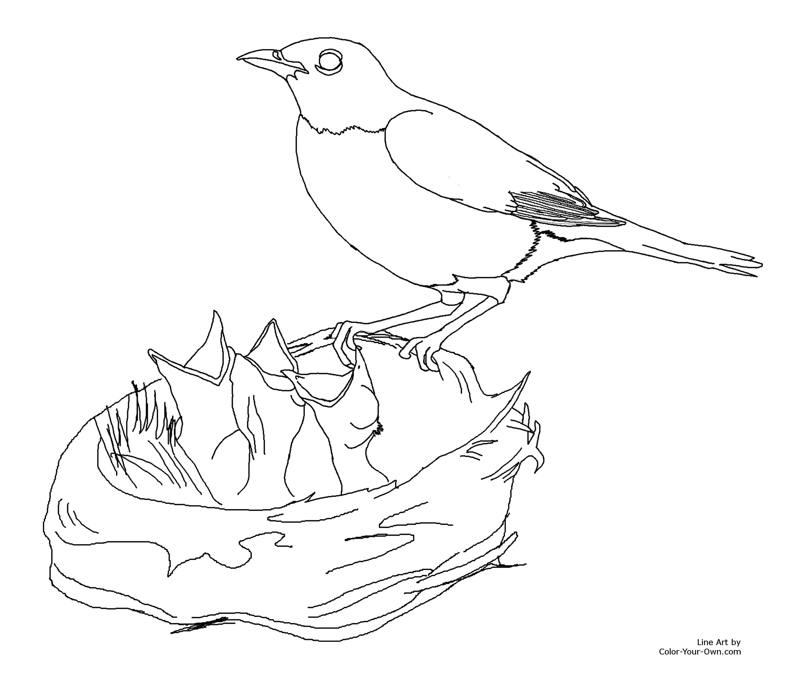 red robin coloring page nightwing and robin colouring pages
