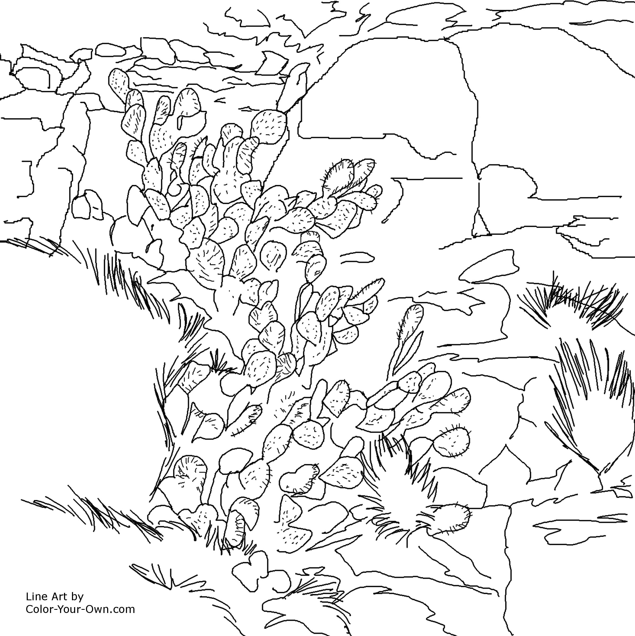 Rocks Minerals Coloring Pages