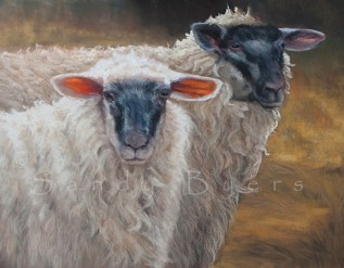 Meha and Ewe SOLD (18x20 dry pastel). Always together, always and forever, Meha and Ewe. Some things are just meant to be.
