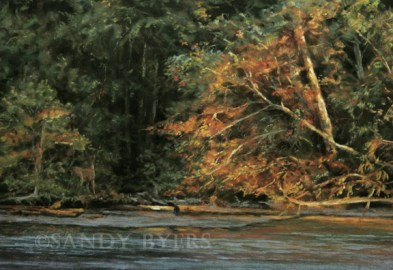 Golden Trail SOLD (12x18 dry pastel). treasures along the water's edge.