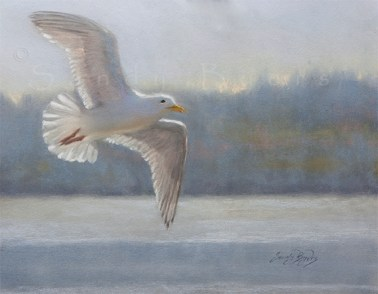 Rainbow Chaser $925 (11x14 dry pastel) some days, when the sun is low and the tide is high, i fly in search of rainbows.