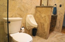 urinal in your home