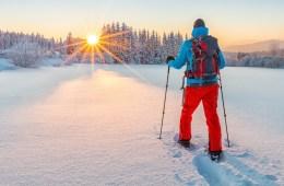 best winter activity