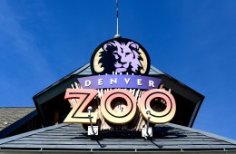 denver attractions cheap