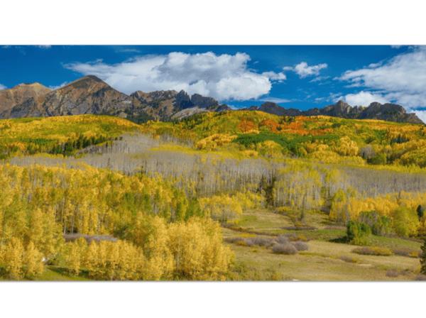 Colorado Kebler Pass Panorama Art