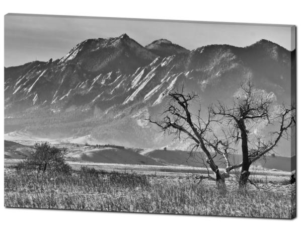 Boulder Colorado Snowy Front Range Canvas Art Print