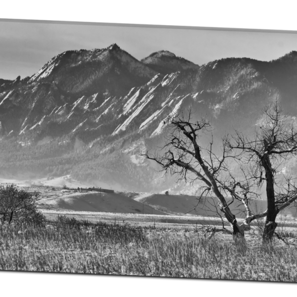 Boulder Colorado Snowy Front Range Canvas Art Print