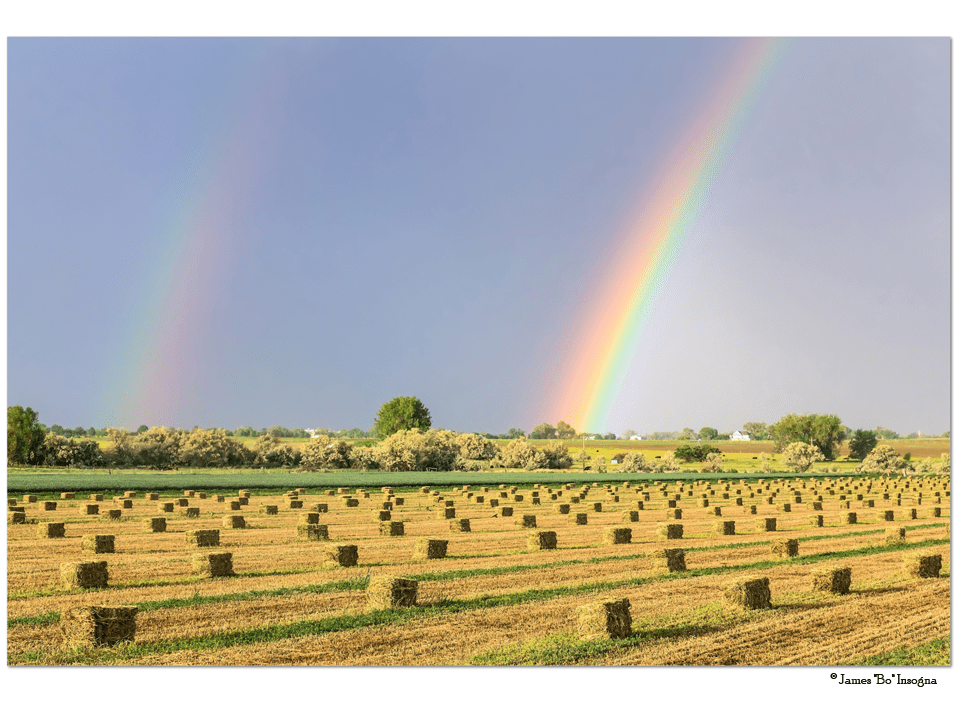"Just Another Country Rainbow 32""x48""x1.25"" Premium Canvas Gallery Wrap Art"