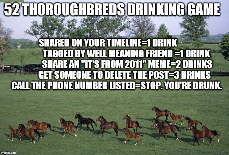 52 Free Thoroughbreds - Photo Credit Unknown