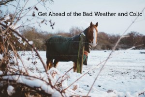 Get ahead of bad weather and colic for your horse!