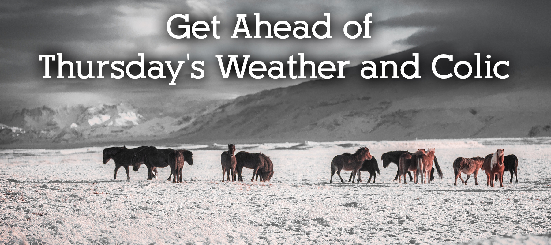 Get Ahead of Thursday's Weather and Colic