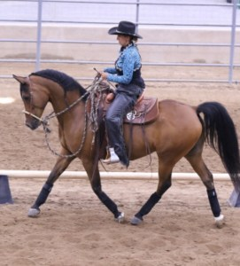 Using Obstacles to Enhance Western Dressage & Overall Performance @ Split Pine Ranch |  |  |