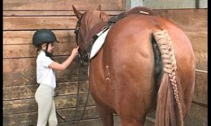 Summer Horse Camp: Horsemanship for Youth at Triple Creek Ranch, Longmont @ Triple Creek Ranch, Longmont/ Boulder County |  |  |