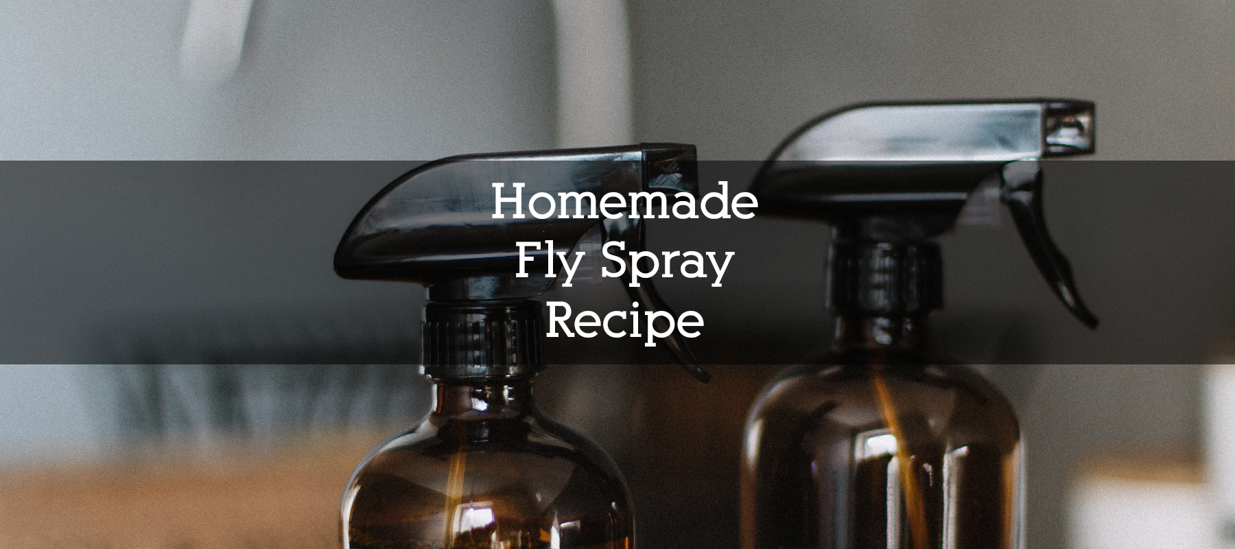 Homemade Flyspray Recipe