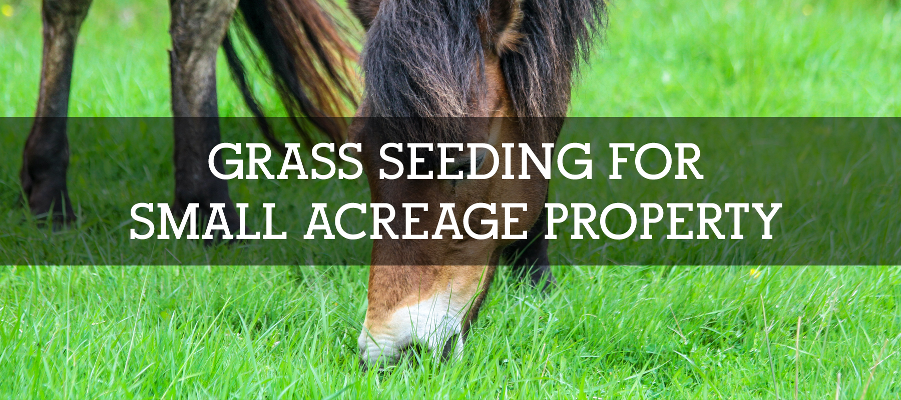 GRASS SEEDING FOR SMALL ACREAGE PROPERTY