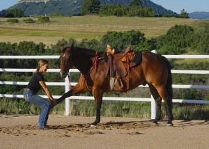Yoga & Equestrian Yoga Weekend Retreat @ Yoga & Equestrian Yoga Weekend Retreat @ M Lazy C Ranch        