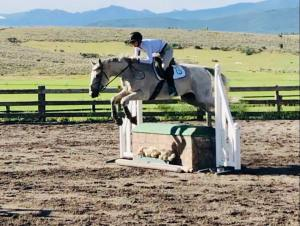 CWHJA Hunter/Jumper Show @ Cozy Point Ranch |  |  |