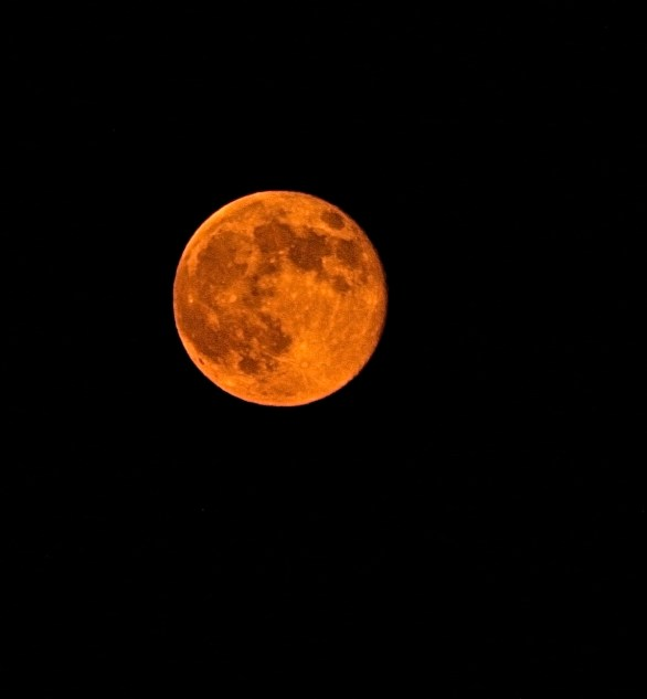 Wildfire smoke tints the nearly full moon orange.