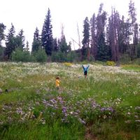 Easy Family Hike in Vail, Colorado