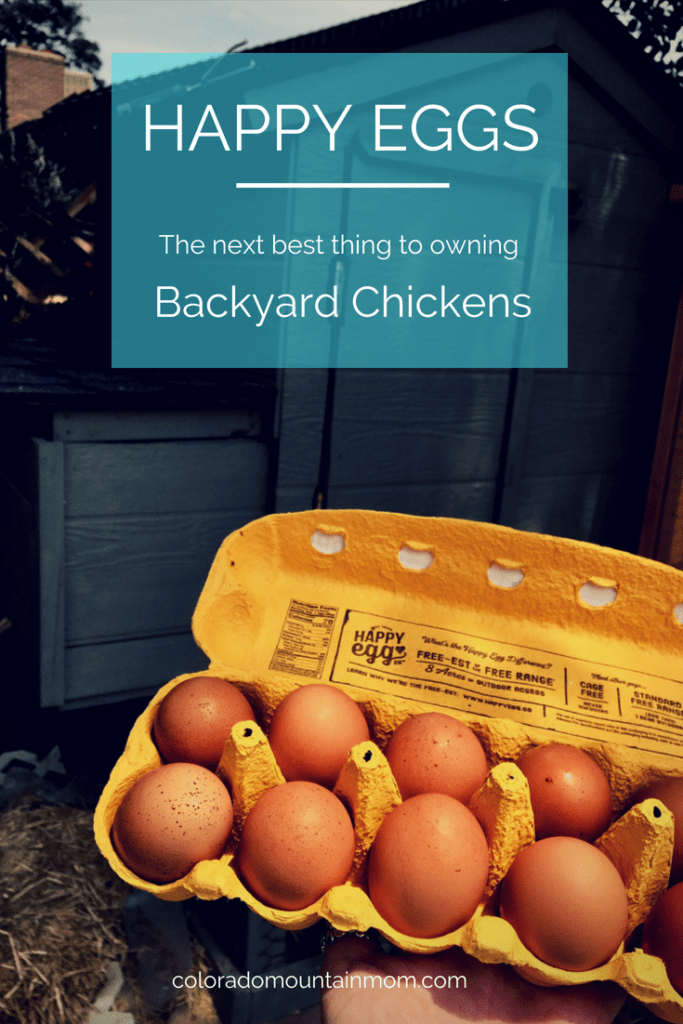 Happy Egg… Next Best Thing to Owning Backyard Chickens