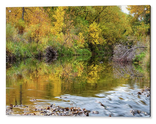 A Time For Reflections Acrylic Fine Art Print