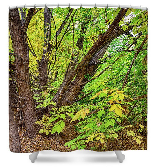 As The Seasons Turn Shower Curtains