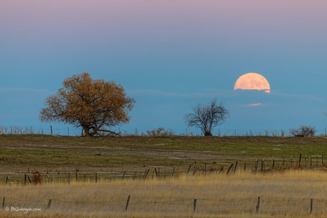November Supermoon Rising