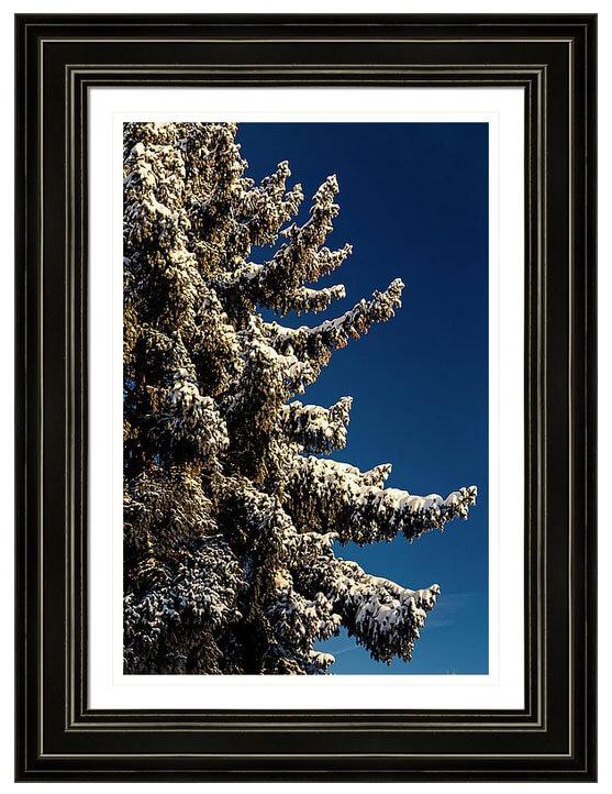 Order Colorado nature landscape framed prints here.