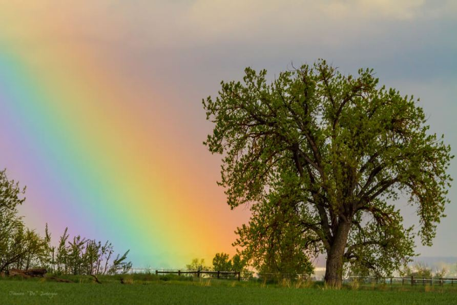 Rainbow From Heaven Art Prints