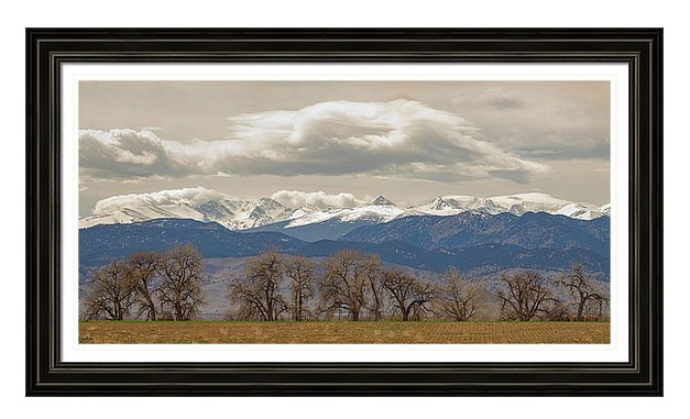 Cottonwood Trees Rocky Mountain View Framed Print Wall Art