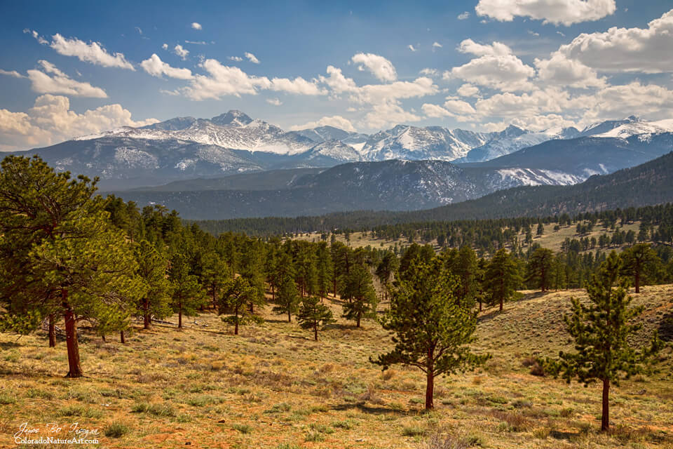 Rocky Mountain Afternoon High Art Prints