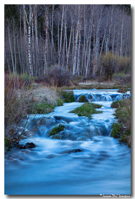 Blue Hour Nature Streaming Art Prints
