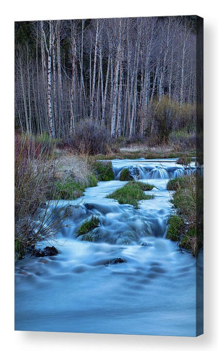 Blue Hour Nature Streaming Acrylic Prints