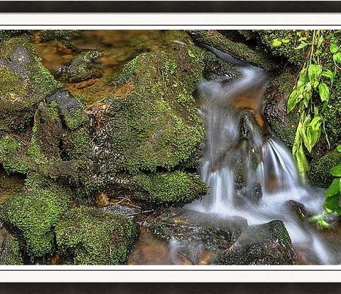 Green And Mossy Water Flow Framed Print