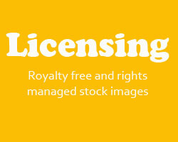 Licensing Royalty free and rights managed stock images