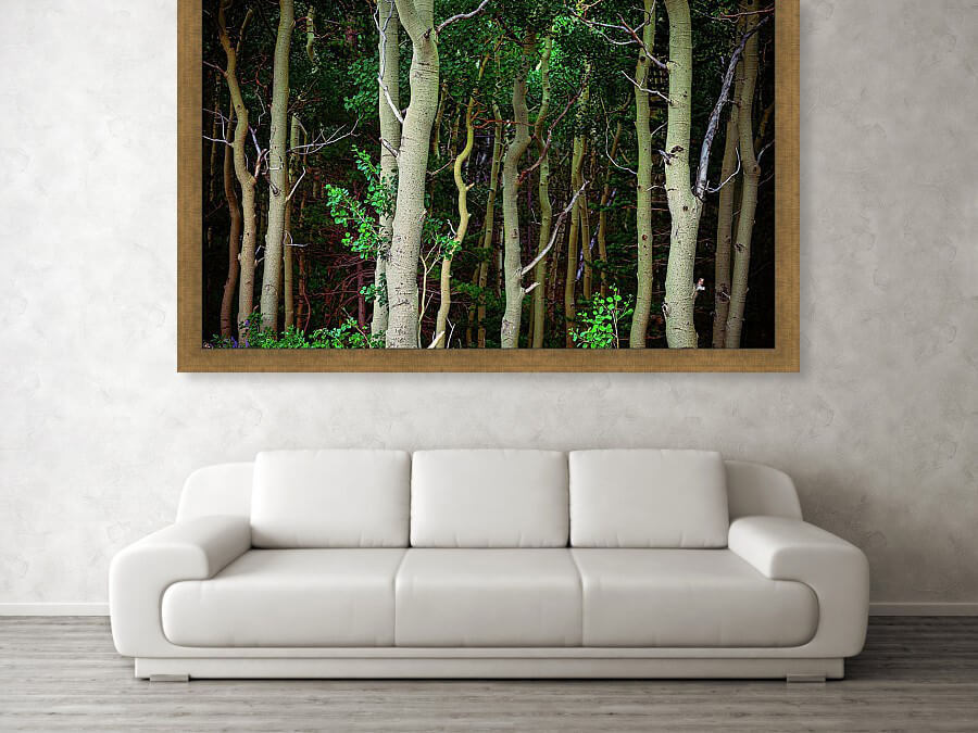 Deep Wilderness Forest Art Print