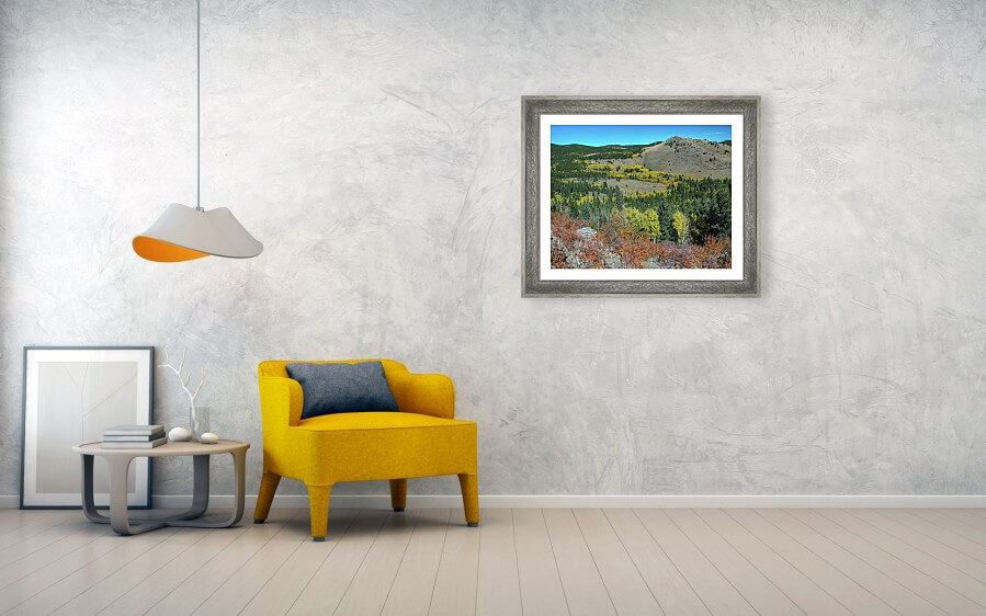 Autumn Hills Of Boulder County Colorado Framed Print