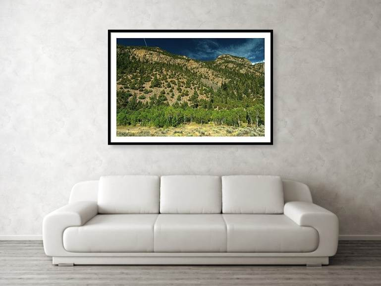 Beautiful Rocky Mountain Picnic Spot And Landscape Framed Print