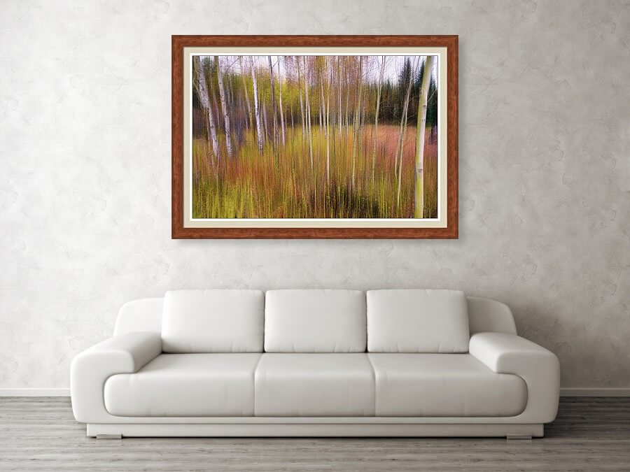 Dreamy Wilderness Fine Art Prints